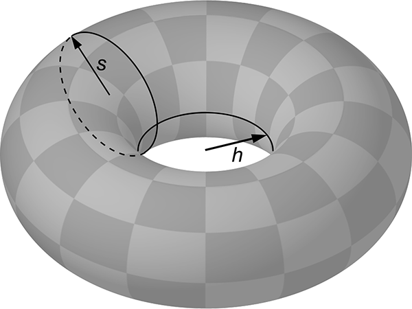 Torus showing radii