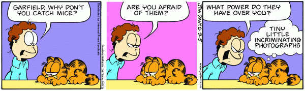 Identity Function Garfield