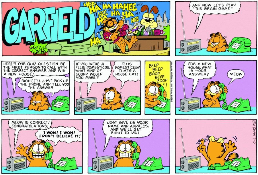 What If Garfield Can Talk